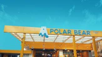 PolarBear-Portfolio-09
