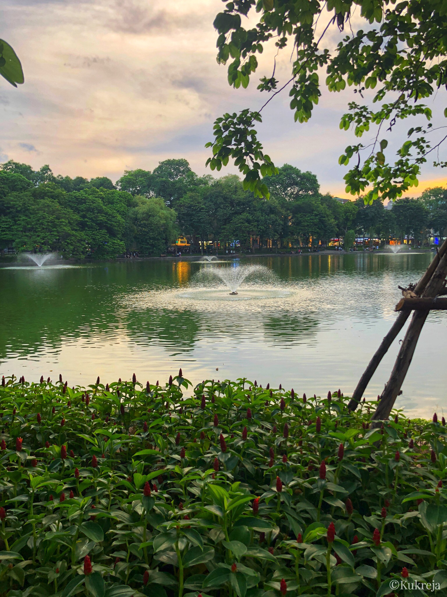 Fountains in the middle of Hoan Kiem Lake surrounded by greenery.